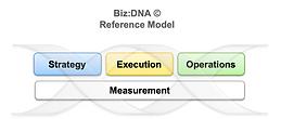 Biz DNA Reference Model.png