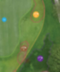 Golf Course True NDVI Aerial Imaging View