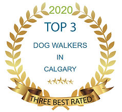 Three Best Rated 2020.jpg