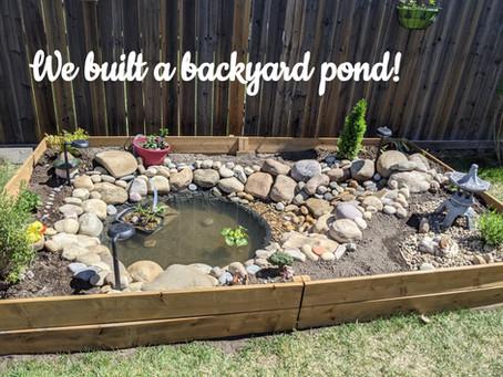 """Our """"DIY"""" Koi Backyard Pond!"""