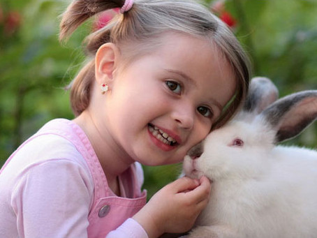 Summer Day Camps for Young Animal Lovers in Calgary!