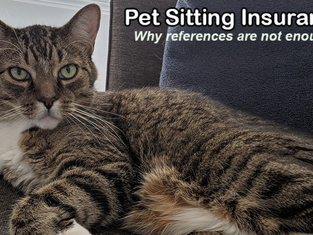 "Pet Sitting Insurance: Why Having ""Great References"" Is Not Enough When Hiring a Pet Sitter."
