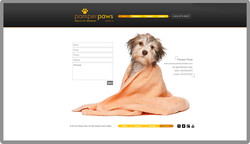 custom-web-development-pet-care-grooming-pamper-paws-contact-serro-design