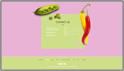 custom-web-development-eat-vegan-meals-food-flo-contact-serro-design