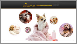 custom-web-development-pet-care-grooming-pamper-paws-serro-design