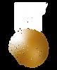 IHF_logo_sygnet_white_RGB .png
