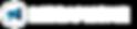 megaphone logo.png