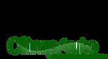 Logo OlimpAuto_edited.png