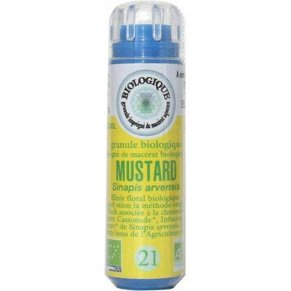 Mustard N°21 Granules