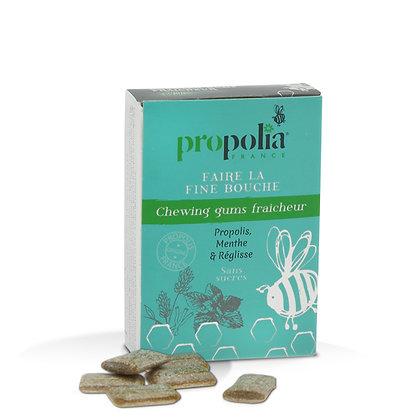 Chewing-gums • Propolis-Menthe