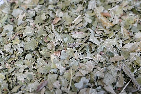 Cassis feuilles BIO