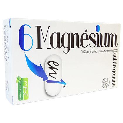 6 Magnésium en 1