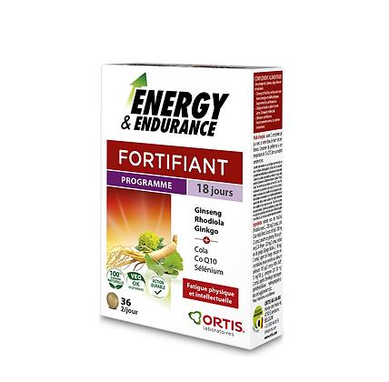 Energy et Endurance