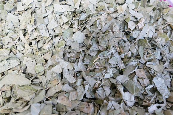 Desmodium feuilles BIO