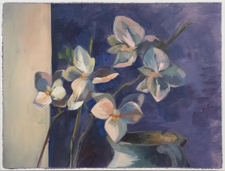 Osanova_orchids_2018.png