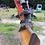 Thumbnail: Atlas Bandenkraan Schaeff-terex 23M  705 M