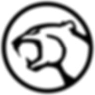 logo mangust web-site.JPG