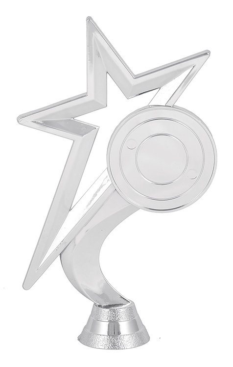 Star With Logo (Silver)