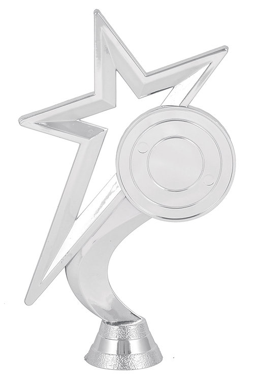 Title Star With Logo Silver
