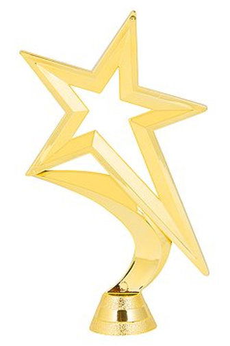 Star - Tube Trophy