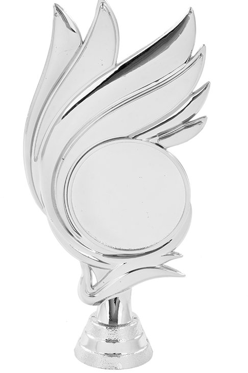 Title Fashion With Logo Silver