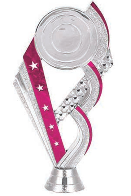 Title Pink 1 With Logo Silver