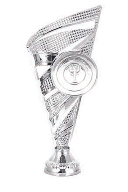 Cup 2 (Silver )