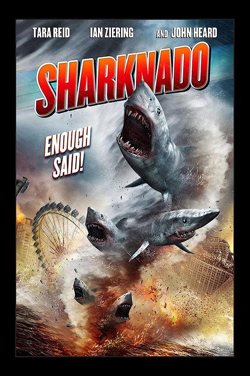 "Online TV/Film Masterclass with SyFy's ""Sharknado"" Casting Director!"