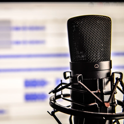 2-Week Online Voice-Over Intensive with Top VO Talent Agent of CESD!