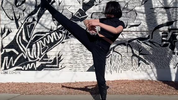 Adaptation Required // Lesley Allen — Dance