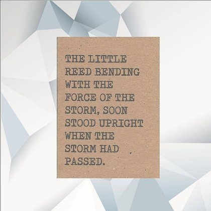 'Little Reed' Cancer Card