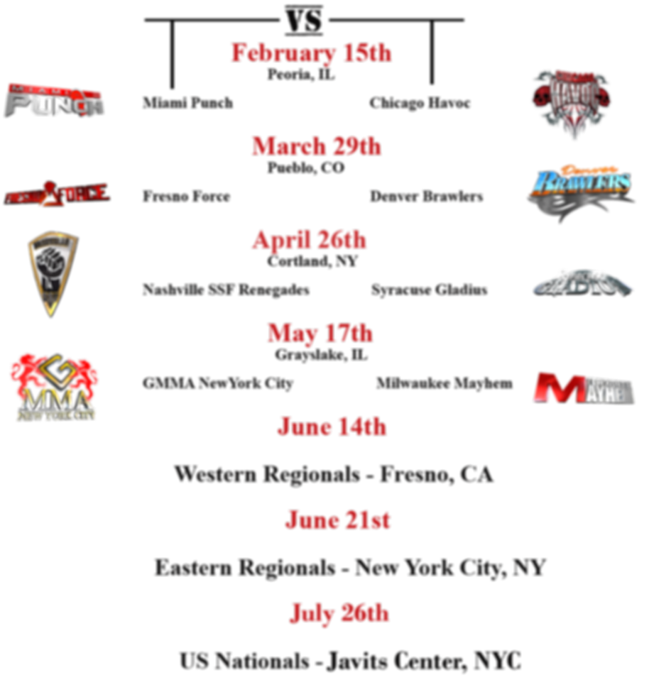 Fighters Source, Fighters Source League, Amateur MMA, MMA League, 2013 Schedule