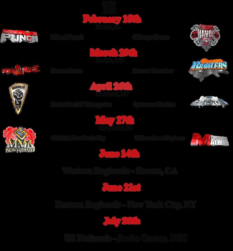 Fighters Source, Fighters Source League, Amateur MMA, MMA League, 2013 Schedule
