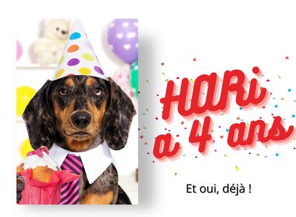 HARi News Octobre : HARi a 4 ans déjà !