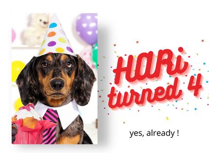 HARi News October: HARi turned 4!