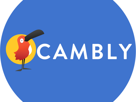 Beginner's Guide to Teaching with Cambly