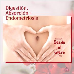 ¿Cómo mejorar tu digestión ayuda con los síntomas de endometriosis o dolor menstrual?