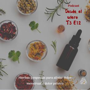Hierbas y especias para manejar el dolor menstrual o dolor pélvico