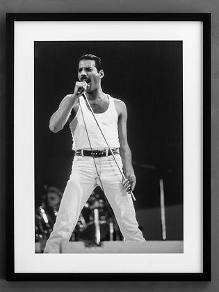 Photo Freddy Mercury