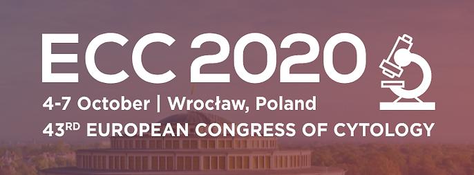 ECC2020.png