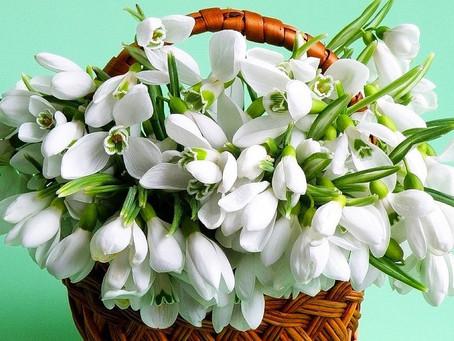 Поздравляем Шабалову Ирину Петровну с юбилеем