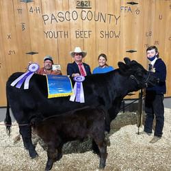 2021 Pasco County Grand Champion Heifer