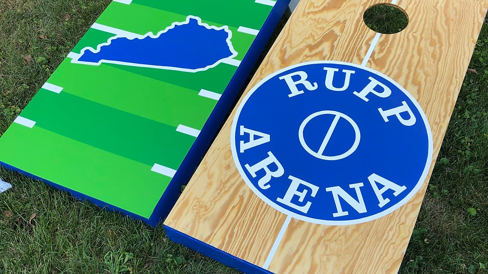 Moderate Design Cornhole Boards with Bags