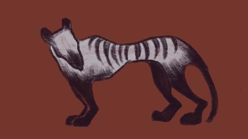 Animals Game Animation