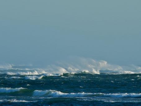 Cape Cod Winter Journal: Chatham Bar