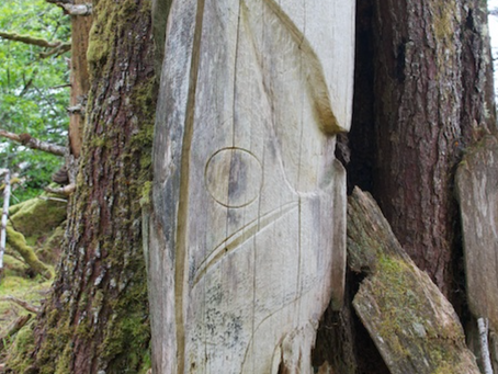 Haida Gwaii: Messages from the Small World