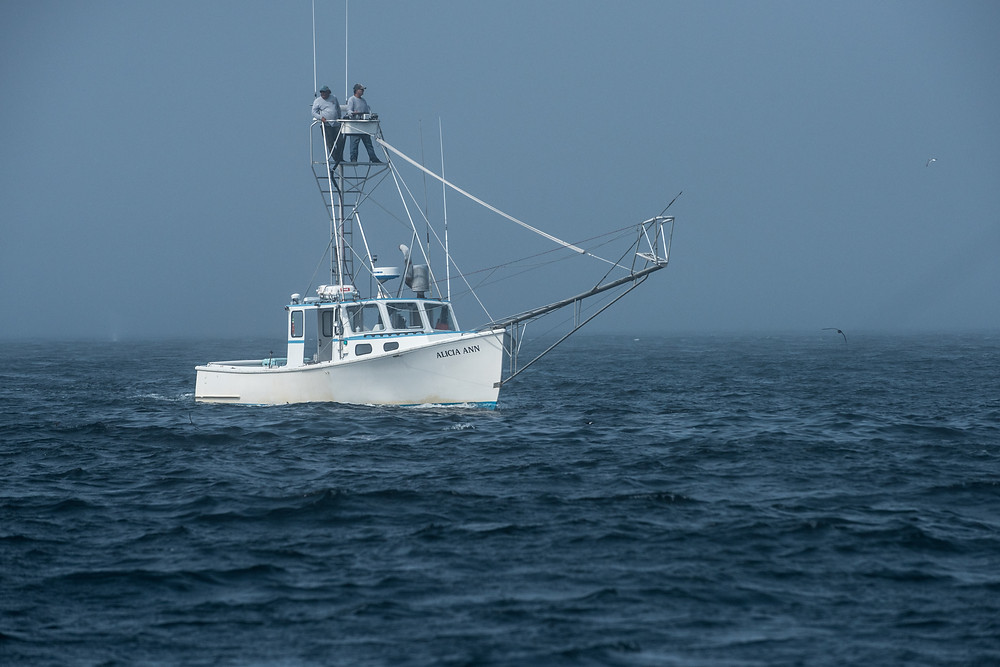Greg Walinsky in the tower of F/v Alicia Ann