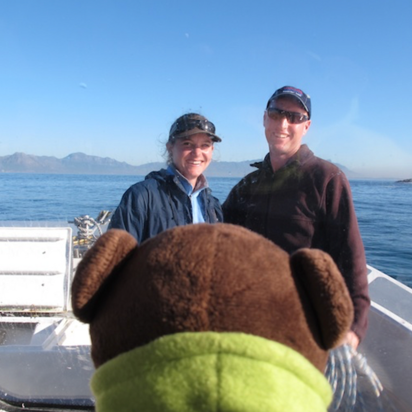 Chris and Monique had a VIP on board - Ed the bear