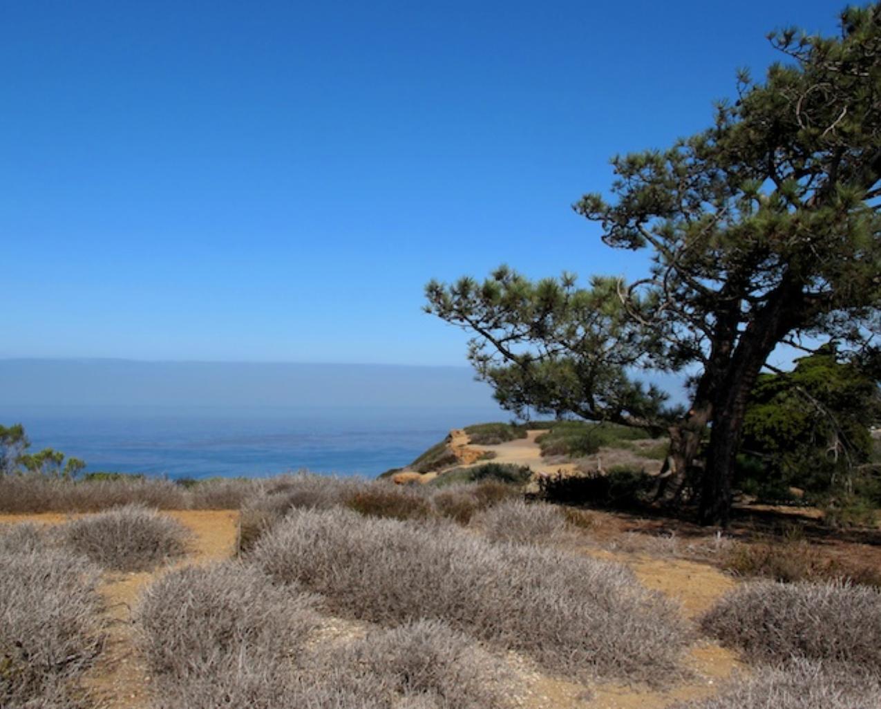 Beautiful Point Loma, CA