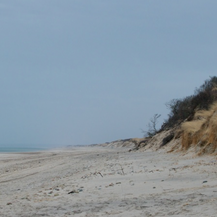 Sandy Neck - Cape Cod Bay side